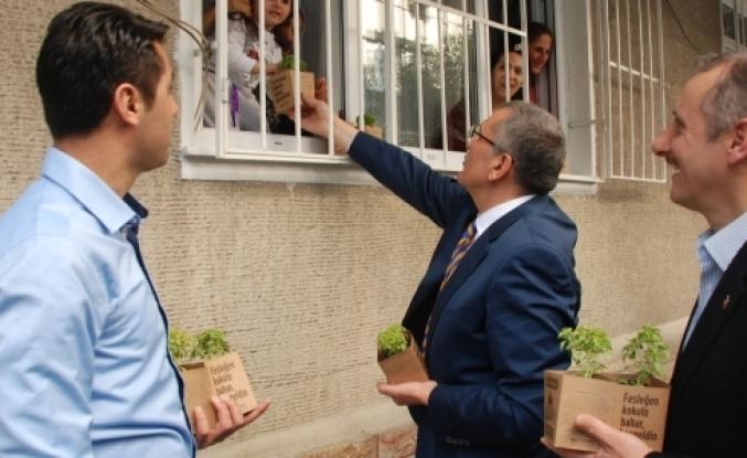 Binlerce Fesleğen Nuripaşa'ya dağıtıldı